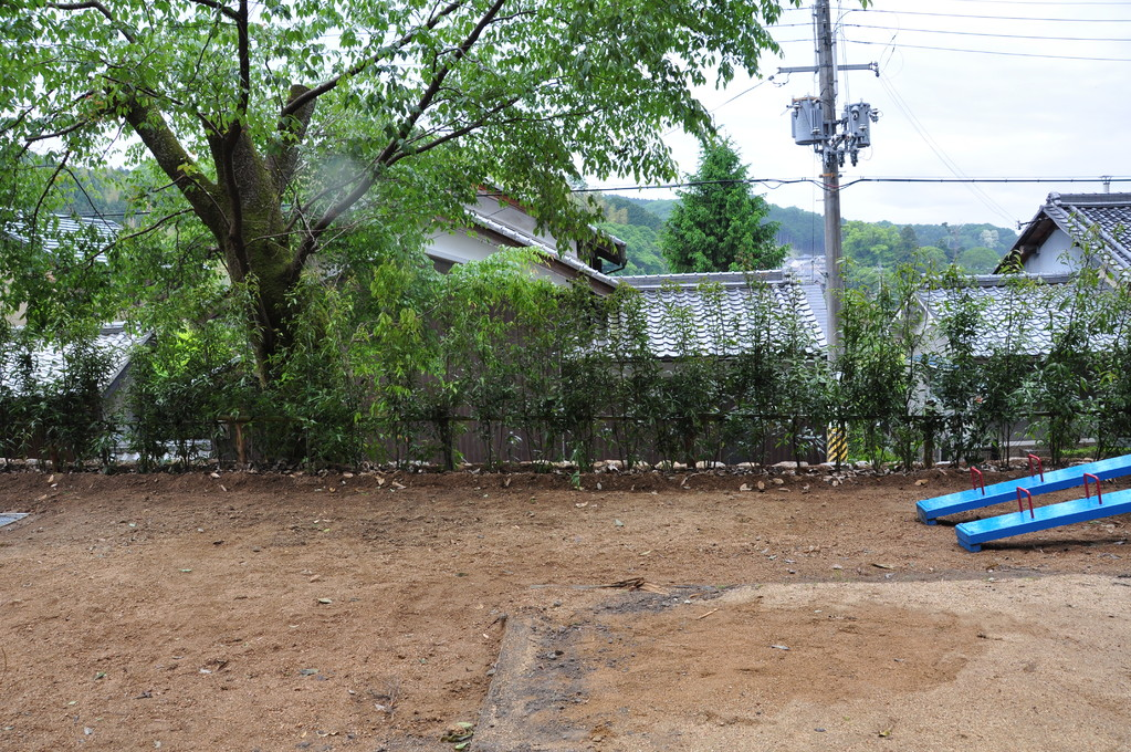 石垣の縁には、樫の木が植えられました。