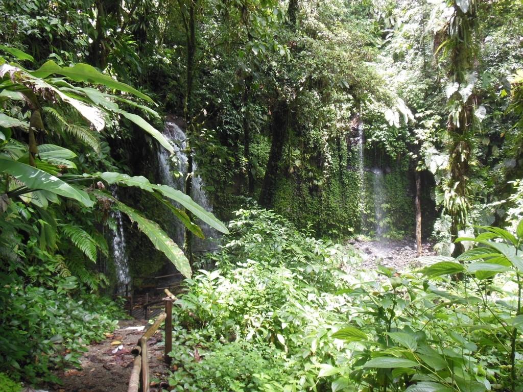 Sulton Falls