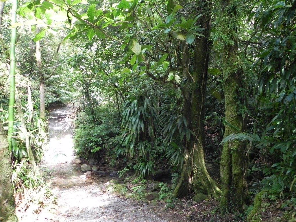 Eingang des Wanderweges zum Middleham Fall