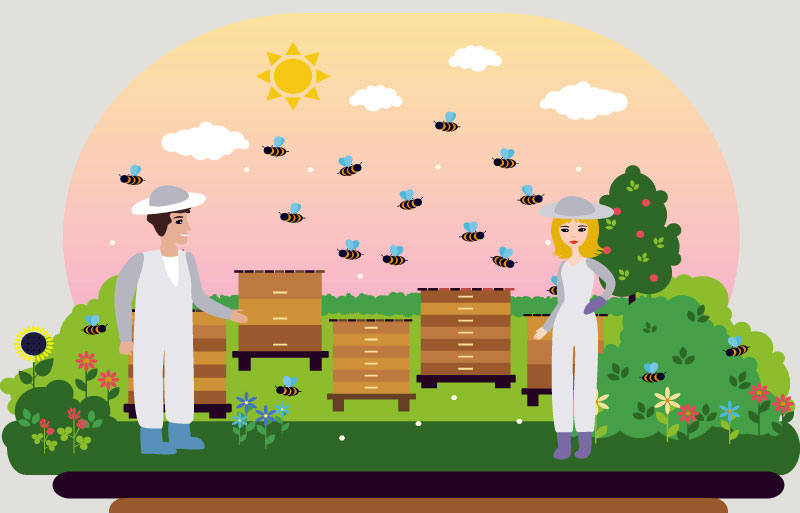 Hai appena iniziato un corso di apicoltura | Diventare Apicoltore il kit completo