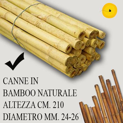 CANNE IN BAMBOO PER SOSTEGNO ORTAGGI E ALTRI USI DA CM 150 5