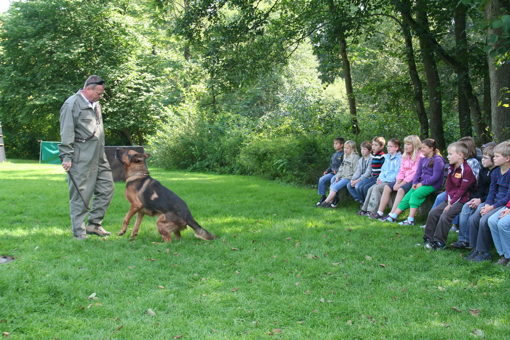 Polizeihund Jimmy macht Ernst