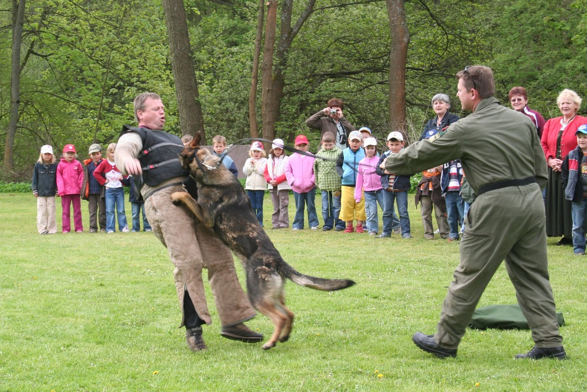 Polizeihund Ando
