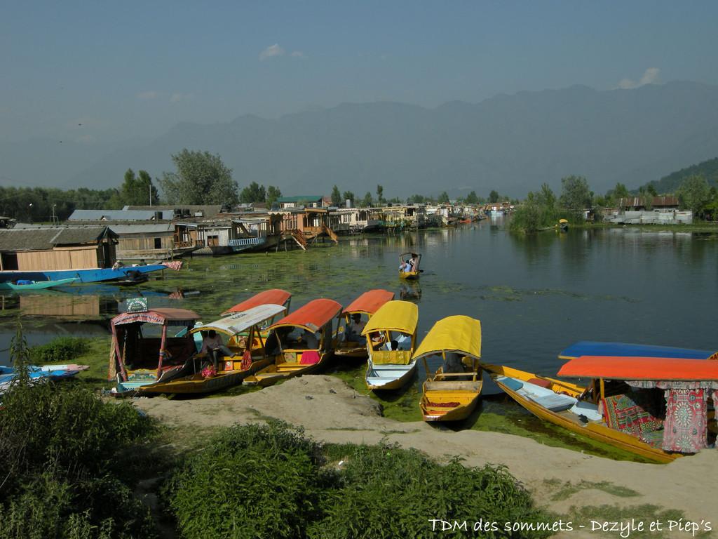 Lac Dal - Srinagar - Cachemire