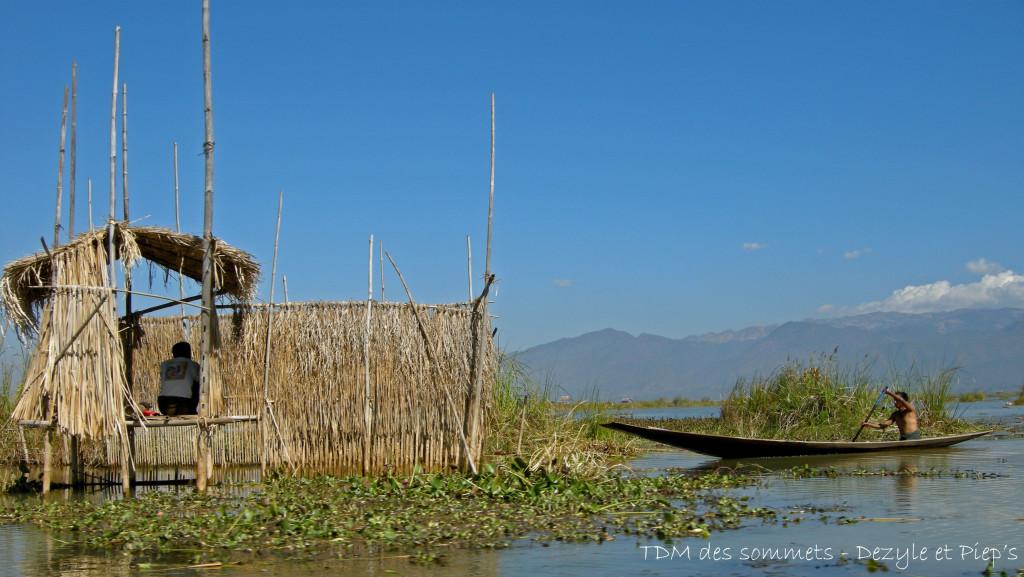 Habitation sur le lac