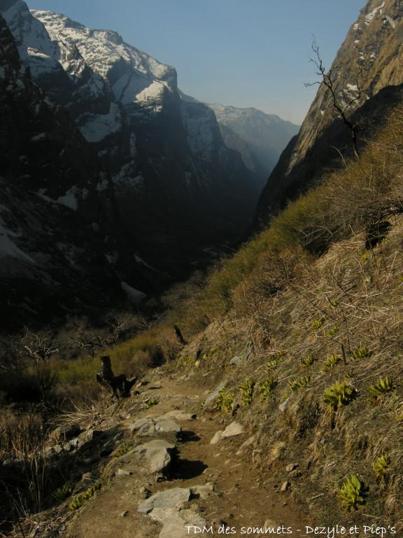 Vallée de la Modi Khola