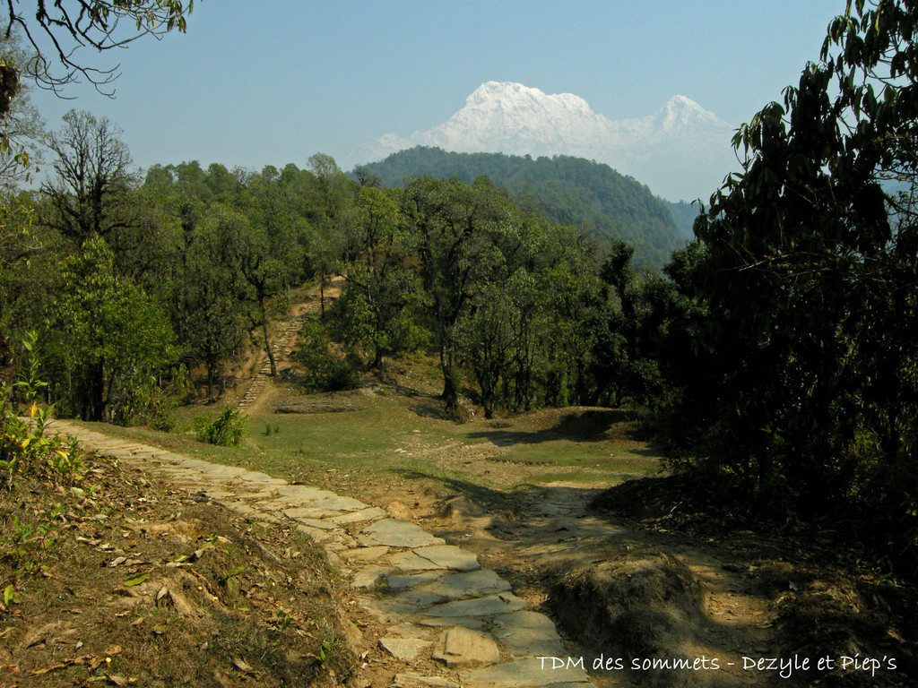 Première vue sur les Annapurnas aorès Damphus