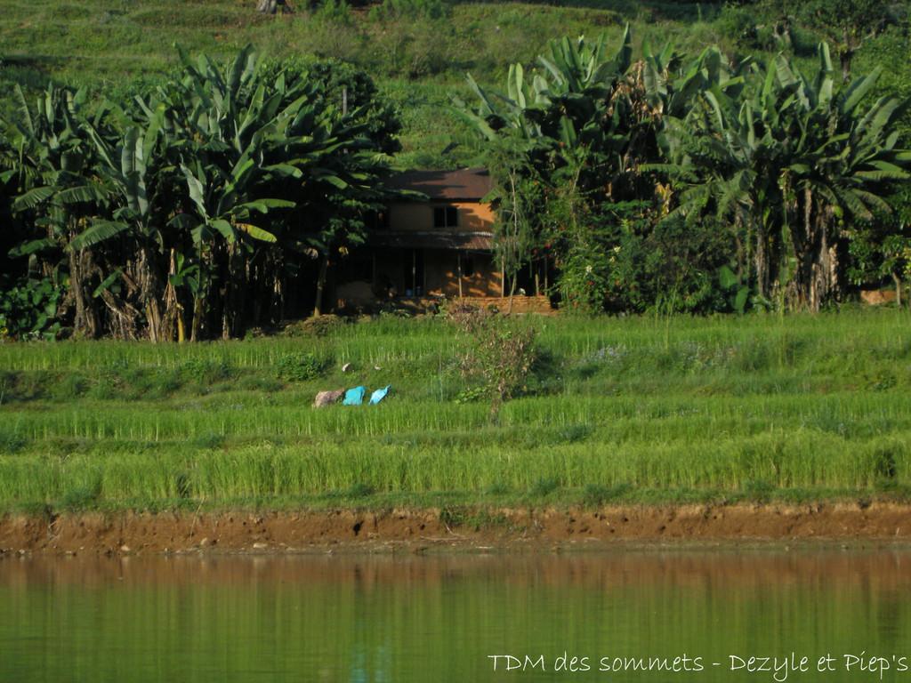 Habitation au bord de l'eau