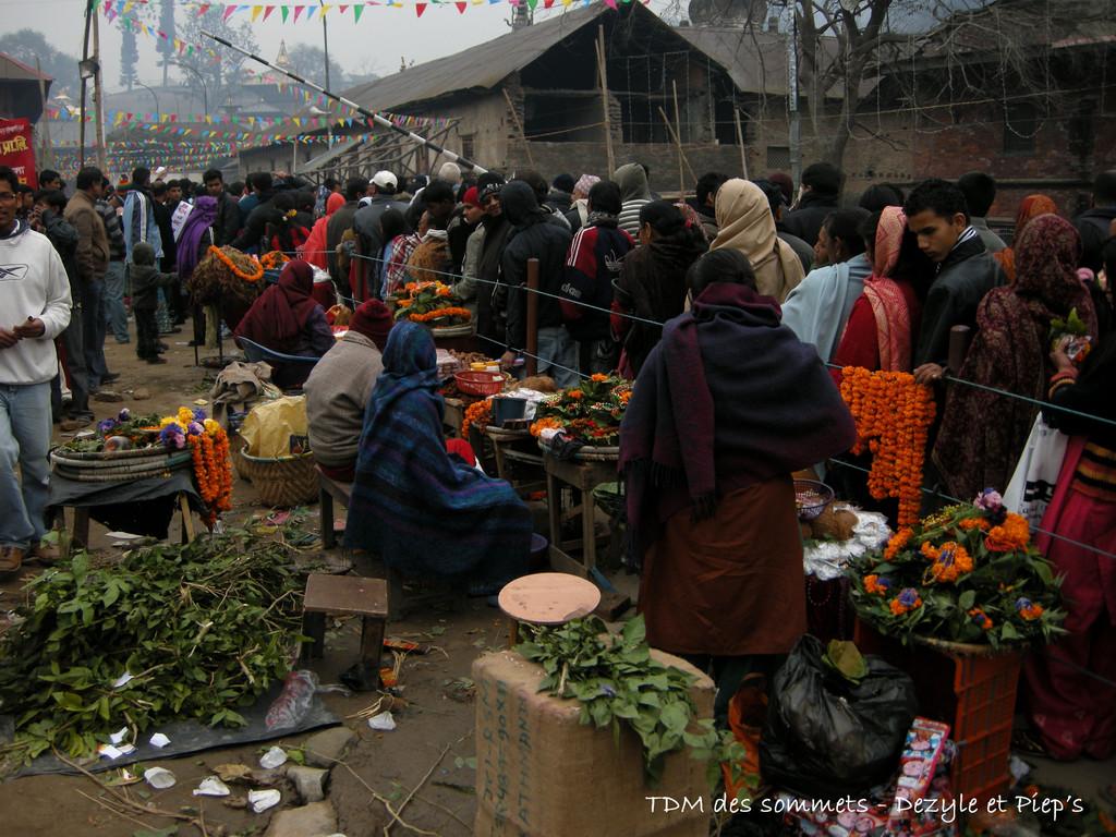 Attente pour entrer à Pashupatinath le jour de Maha Shivaratri