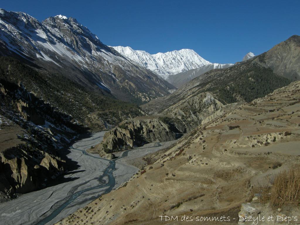 Au fond, le Tilicho, 7134 m