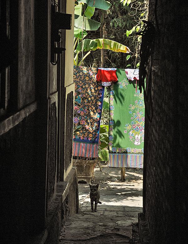 Reisefotografie: Java: Blick aus einer schmalen Gasse zwischen den Dorfhäusern. LEICA M9, mit ZEISS Biogon 2,0/35 mm, Foto: Klaus Schoerner