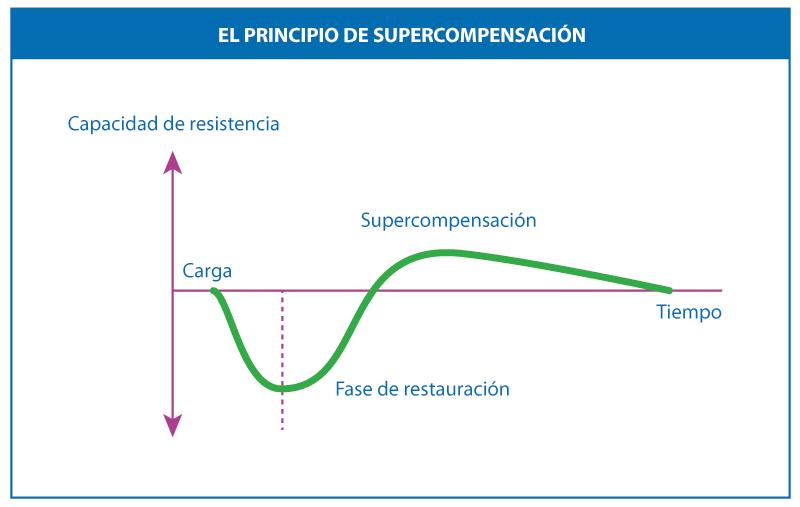 El principio de Supercompensación