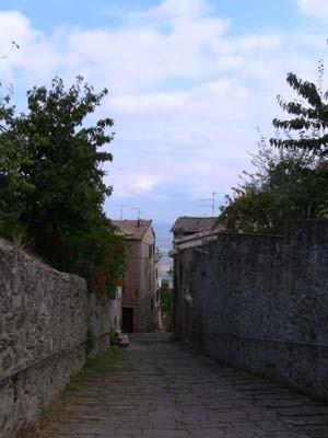 丘の上の街は、どこも坂道が多い。