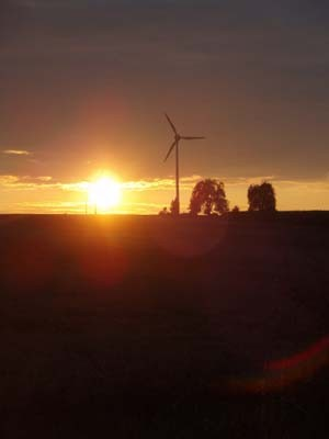 麦畑と風車。嘘のように美しい夕暮れ。続きを読むをクリック!