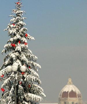 すんません、私が撮った写真じゃありませんが、大雪の日のフィレンツェ。
