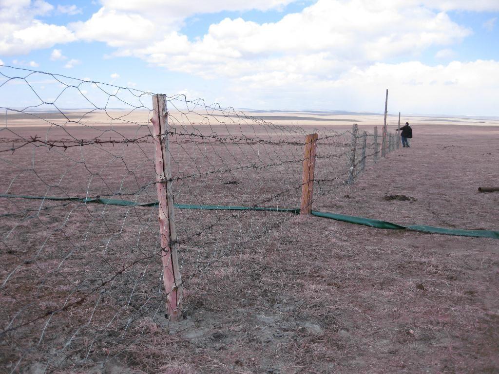 植林用地の柵