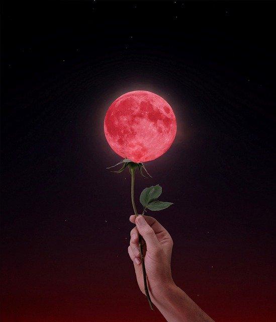 Vollmond-Blumenmond in Schütze, die Zeit der Wunder, der Veränderungen und Einbrüche!