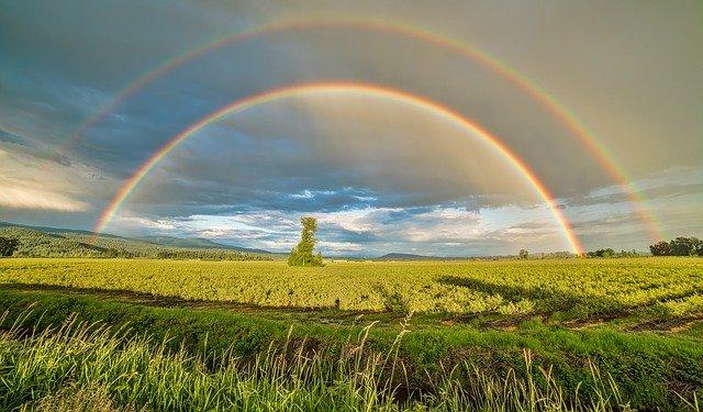 Sonne in den Zwillingen - die hellste Zwillingszeit aller Zeiten, denken heisst werden, wo und wie auch immer!