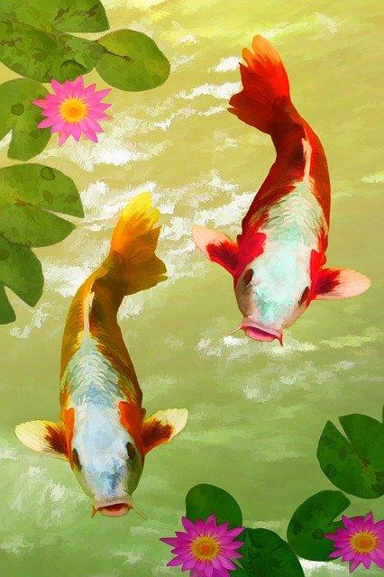 Jupiter in Fische - Träumen erfordert Mut, Anstieg der übersinnlichen Kräfte, Ausdehnung der Liebe und Einheit!