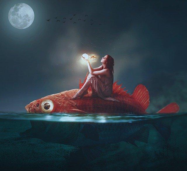 Sonne in den Fischen - fühlen und heilen, bedingungslose Liebe für dein Trauma, Ruf nach Mitgefühl und Empathie!