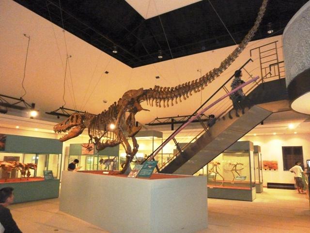 恐竜センター