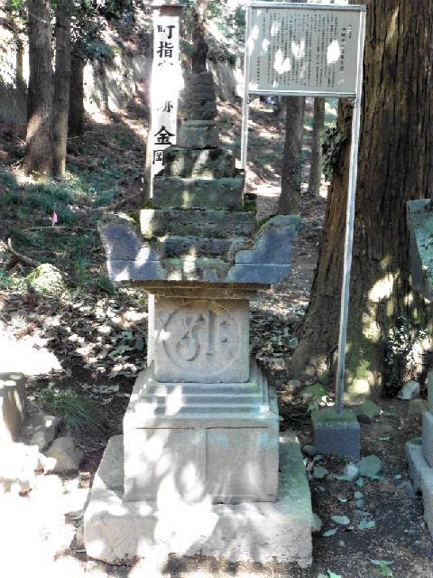 伝・桃井直常の墓2(金剛寺跡)