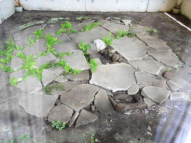 長井石器時代住居跡