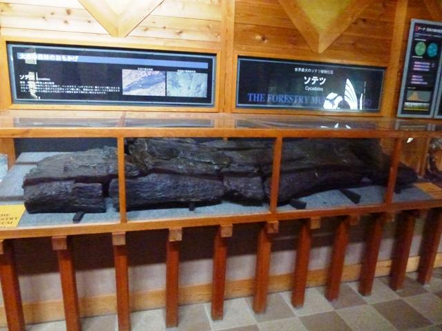 上野村森林科学館
