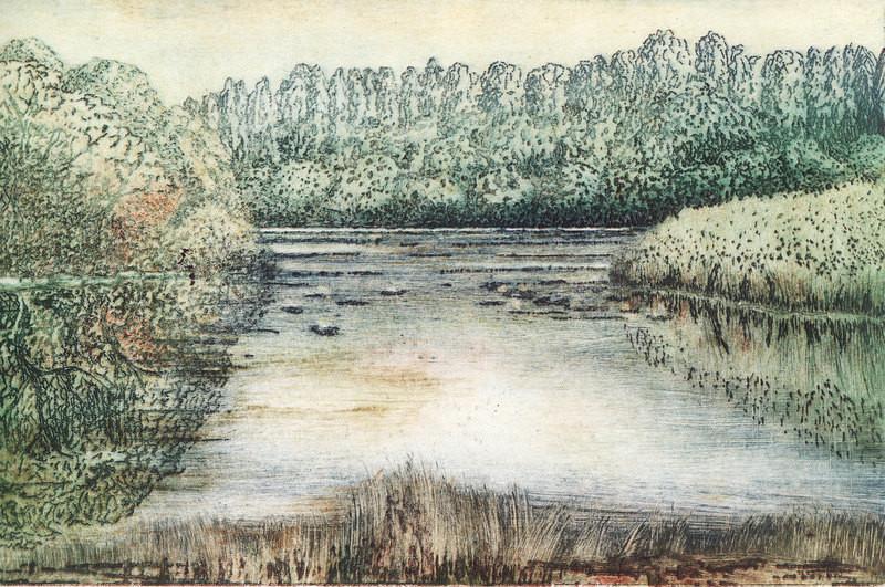 Wasserlandschaft // Linienätzung - Mehrfarbradierung // Druckformat 19,2 x 29.5   2009