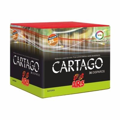 BATERÍA 36 DISPAROS CARTAGO