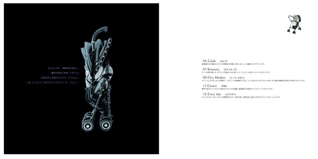 stroller_cat