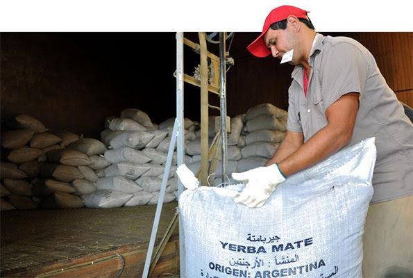 Oportunidad histórica para Misiones: India importará yerba mate