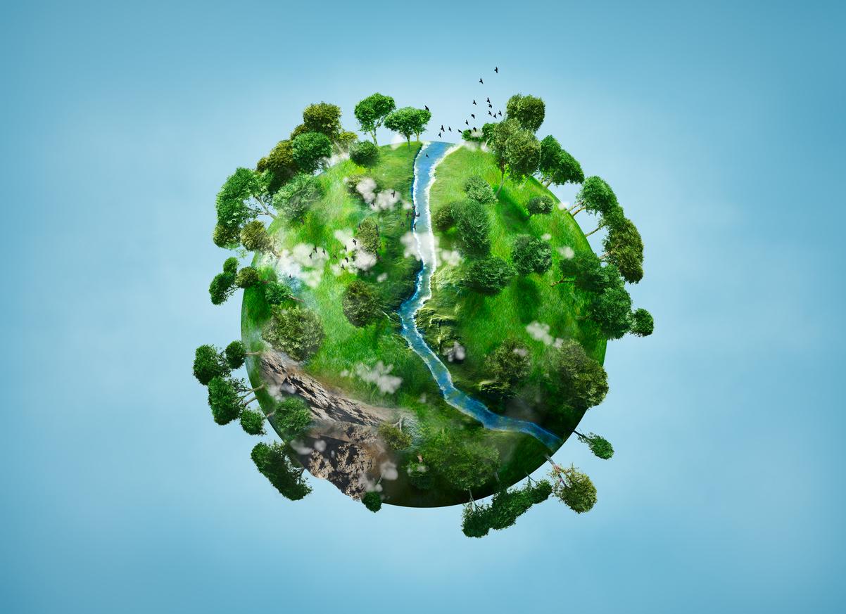Hoy se celebra el Día de la Madre Tierra: una fecha para concientizar sobre los efectos del deterioro ambiental en la salud humana