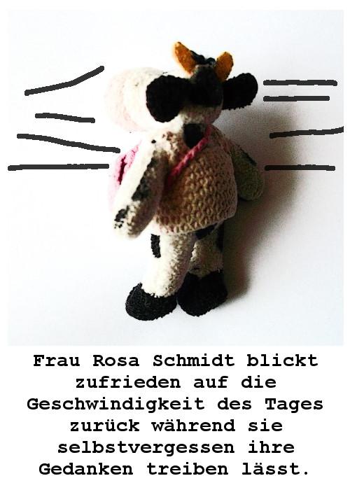 Situationen aus dem unwahrscheinlich poetischen Leben  der Frau Rosa Schmidt  VIERTE TÜTE