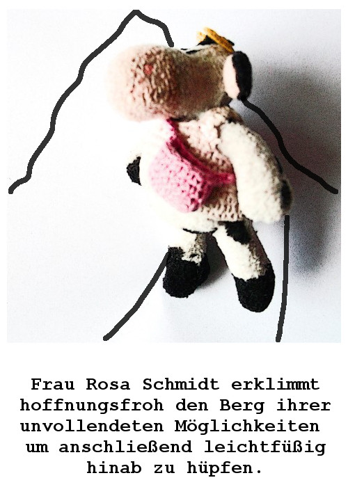 Situationen aus dem unwahrscheinlich poetischen Leben  der Frau Rosa Schmidt  ERSTE TÜTE