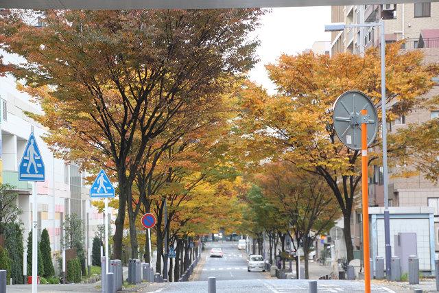 横浜歴史博物館からセンター北駅へ
