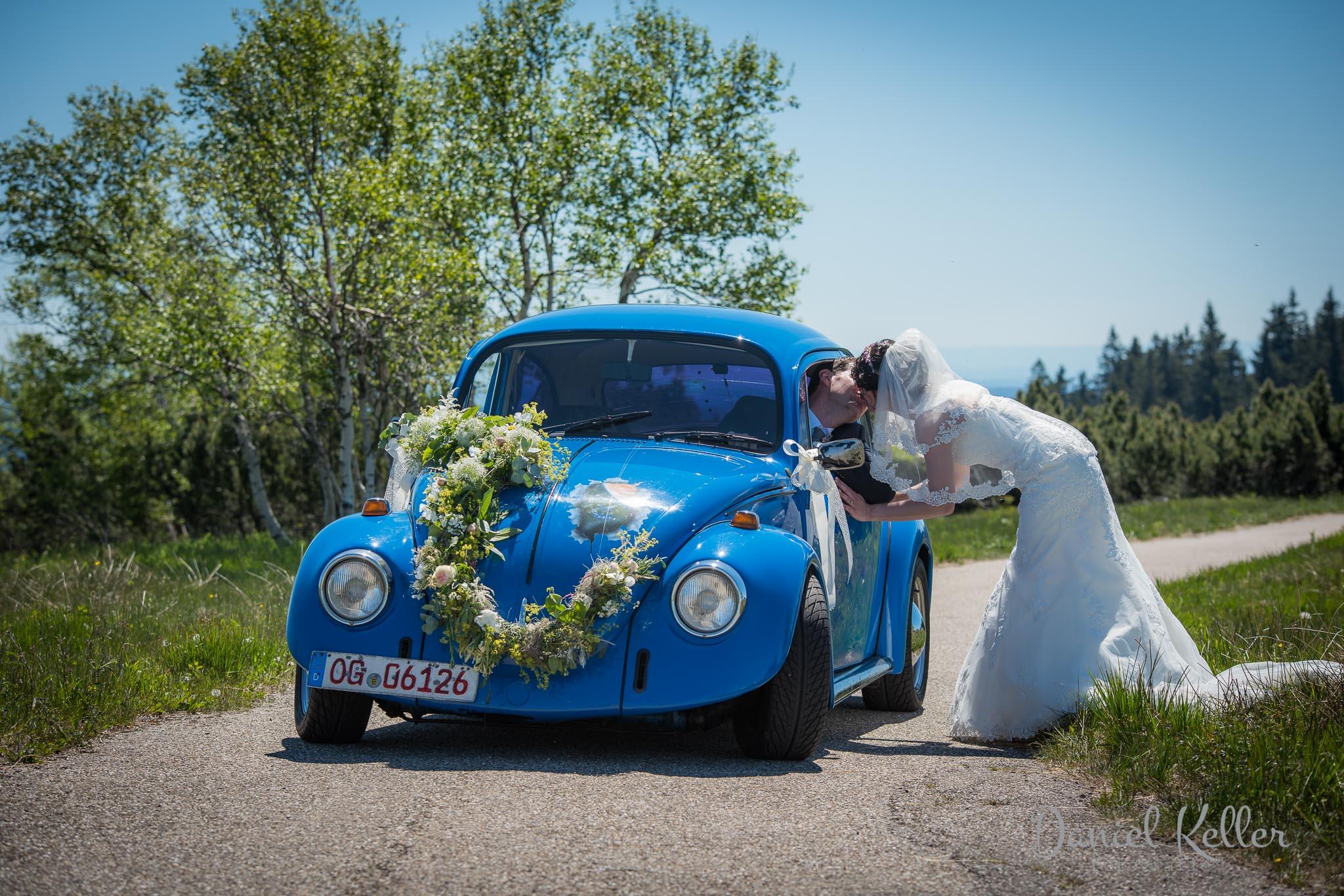Käfer Hochzeit Grindeturm