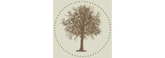 Benjamin Raquin – Auprès de vos arbres