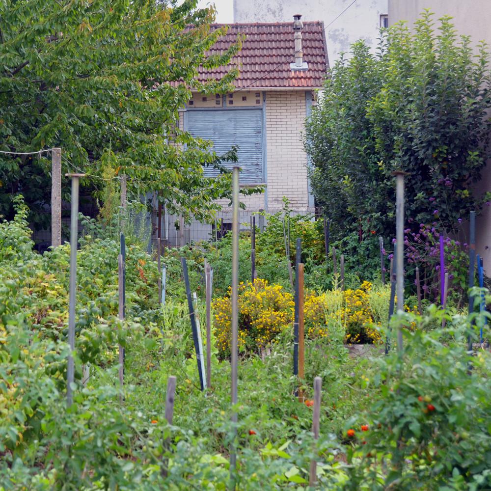 Jardin caché - Marie-Claude Simeone-Senelle