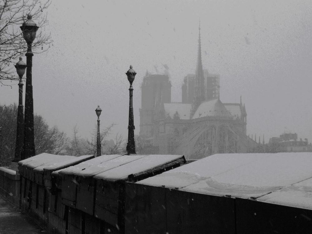 Notre-Dame neige