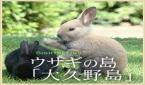 ウサギの島休暇村大久野島