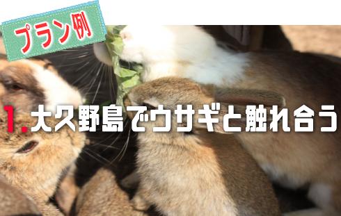 ウサギの島 大久野島1