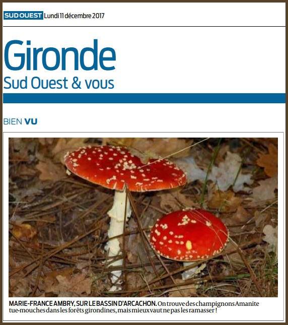 Photo Marinelle sur Journal Sud-Ouest, page Gironde, édition du 11/12/2017