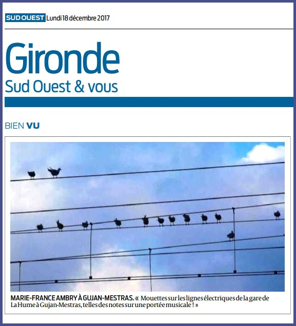 Photo Marinelle sur Journal Sud-Ouest, page Gironde, édition du 11/12/2017
