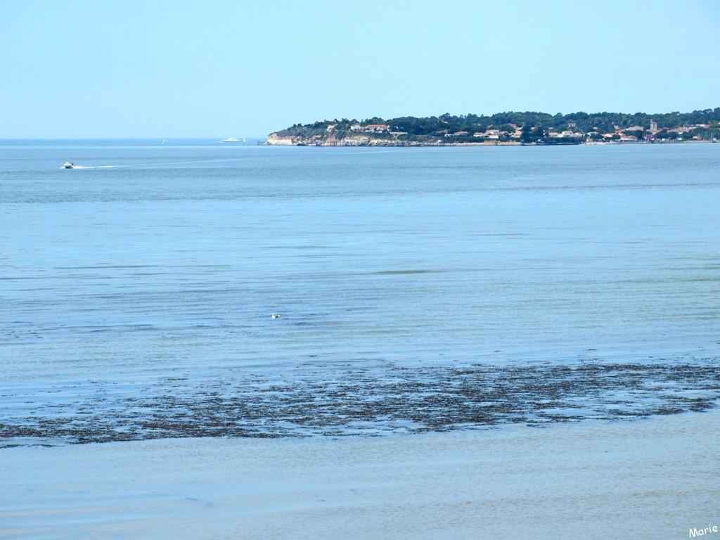 Vue sur La Gironde et Meschers-sur-Gironde en toile de fond depuis Talmont-sur-Gironde (Charente-Maritime)