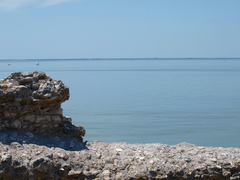 Vue sur La Gironde depuis les fortifications de Talmont-sur-Gironde (Charente-Maritime)