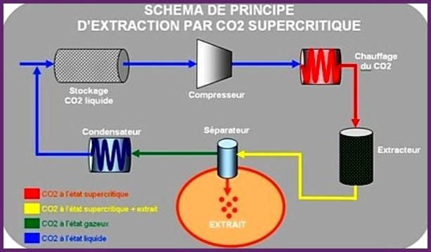 Schéma de principe - Extractio au CO2 supercritique