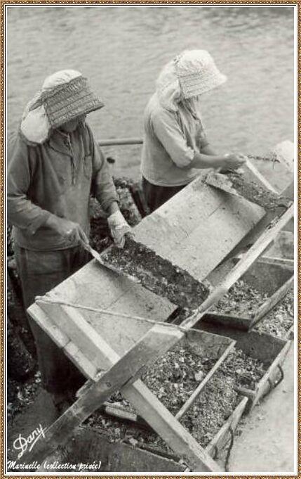 Gujan-Mestras autrefois : Otréicultrices au détrocage des tuiles, Bassin d'Arcachon (carte postale, collection privée)