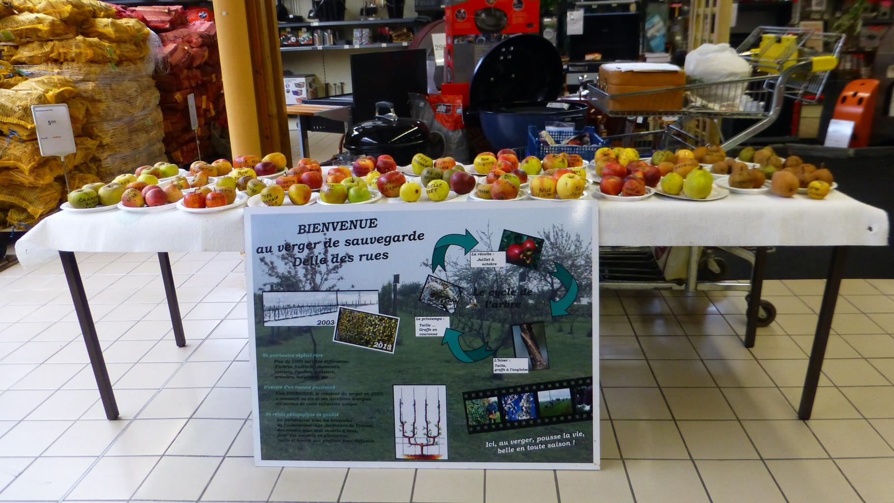 La table des fruits et le panneau d'accueil du verger