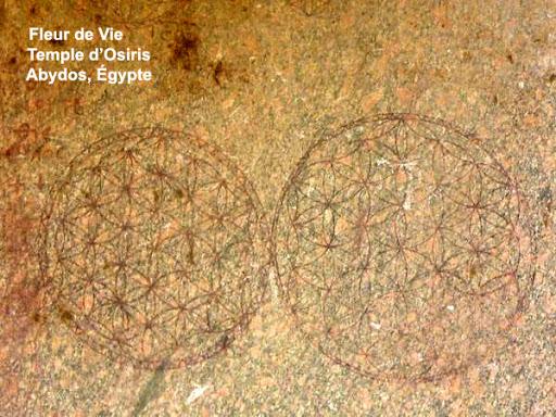 Fleur de vie sur le Temple d'Osiris à Abydos en Egypte